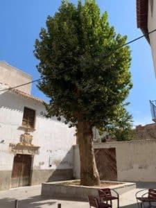Casa de los Paez de Espinosa
